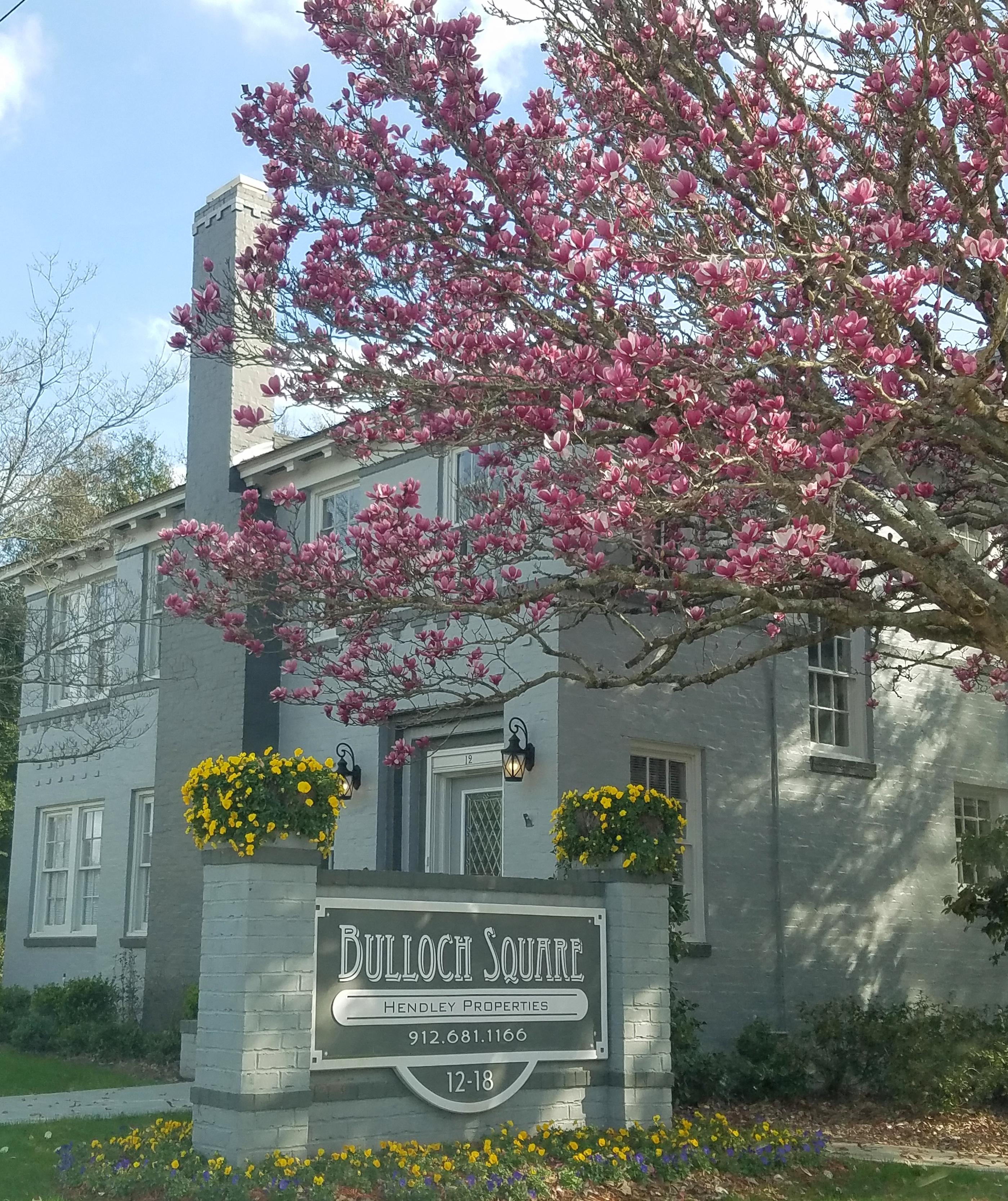 Apartments In Statesboro Ga: Hendley Properties, Statesboro, GA Rentals